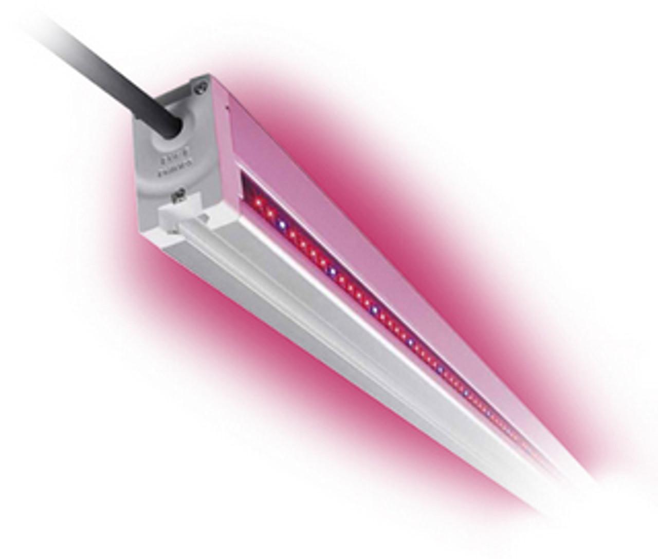 Phillips LED Light Bar
