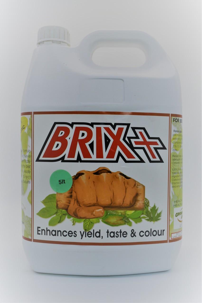 Brix Plus 5L