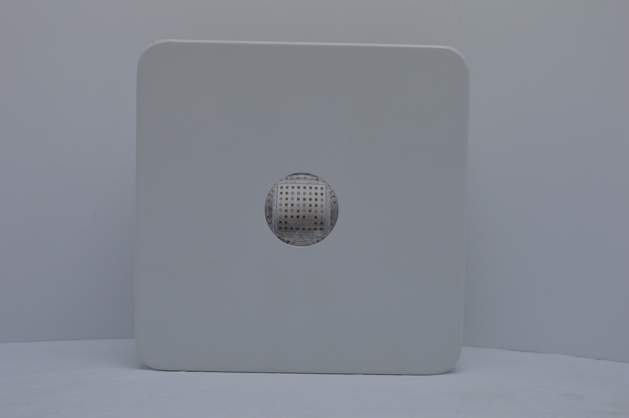 Lush Pro 100w Cob LED