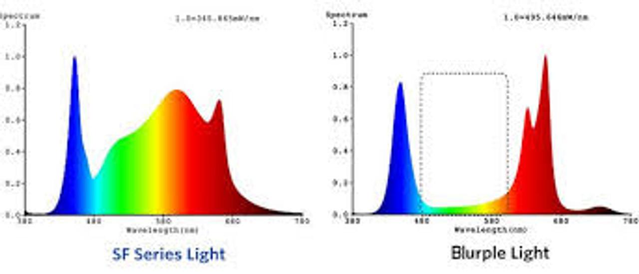 SF4000 spectrum