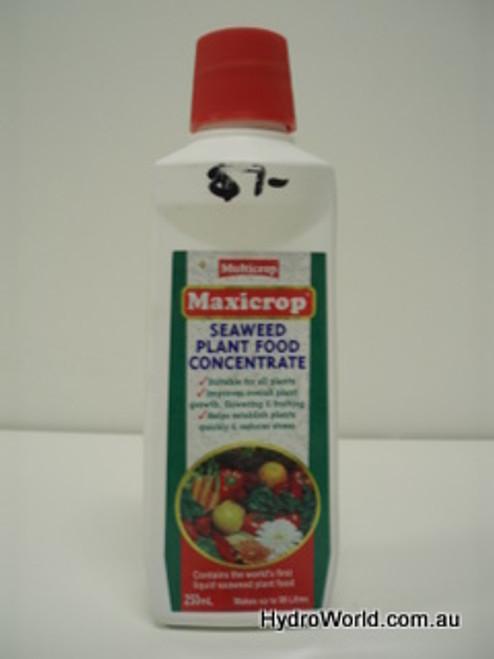 Maxicrop Seaweed Plant Food 250ml