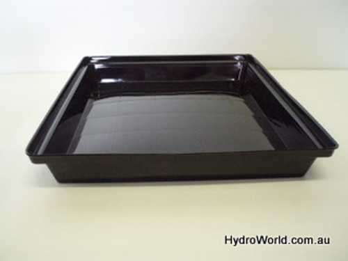 Small Tray Solid