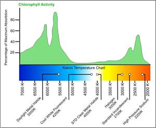 grow-lights-chart.jpg