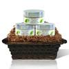 Supreme Sensations Gift Basket (Pure & Natural)