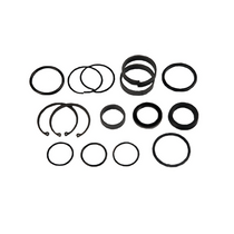 2.5 in. Cylinder Seal Kit | Jerr-Dan