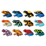 Shaped Memory Match Tropical Frogs