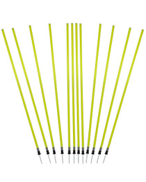 Spike Pole with Spring Set