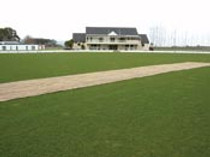 Hessian Cricket Pitch Cover