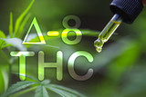 Boston Hempire Explains: What Is Delta 8 THC?
