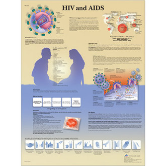 HIV and Aids Poster
