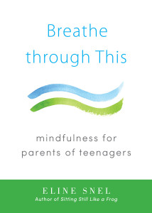 Breathe through This: Mindfulness for Parents of Teenagers - ISBN: 9781611802467