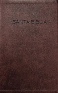 Biblia NVI - ISBN: 9781623370558