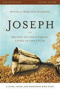 Joseph Study Guide with DVD - ISBN: 9780310696384