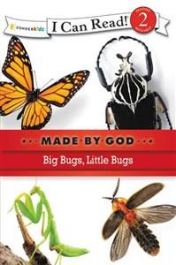 Big Bugs, Little Bugs - ISBN: 9780310721864