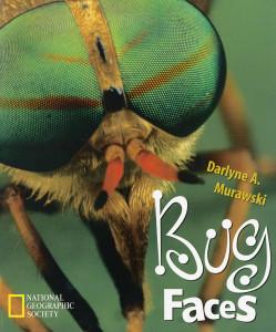 Bug Faces:  - ISBN: 9780792275572