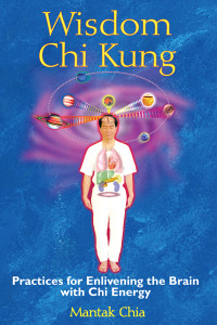 Wisdom Chi Kung: Practices for Enlivening the Brain with Chi Energy - ISBN: 9781594771361