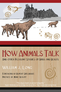 How Animals Talk: And Other Pleasant Studies of Birds and Beasts - ISBN: 9781591430568