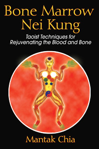 Bone Marrow Nei Kung: Taoist Techniques for Rejuvenating the Blood and Bone - ISBN: 9781594771125
