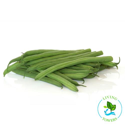 Vegetables - Beans, Green