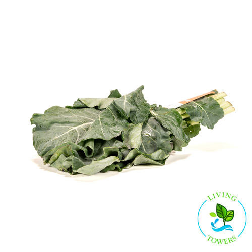 Greens - Collards