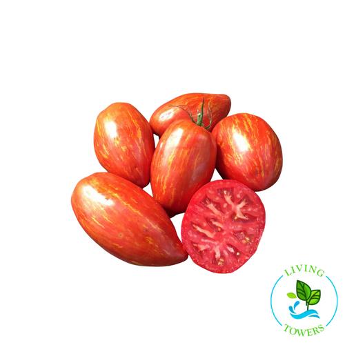 Vegetables - Tomato, Speckled Roman