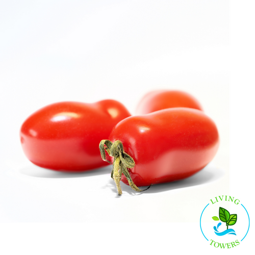 Vegetables - Tomato, Granadero