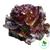 Lettuce - Red Summer Crisp, Cherokee