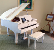 Should you invest in an acoustic piano , a digital piano or a hybrid piano