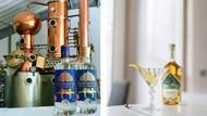 World Martini Day Pairings