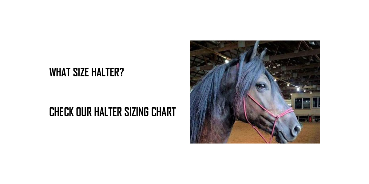 How to select halter size
