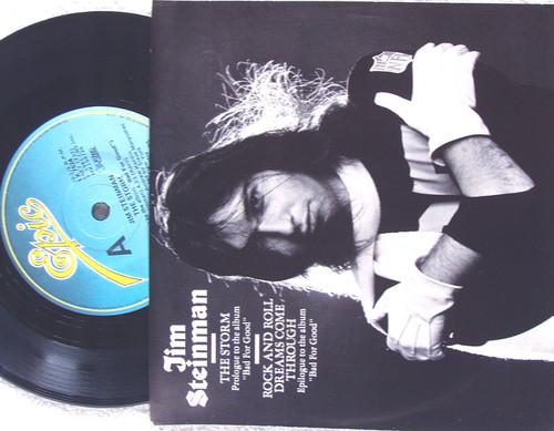 "Arena Rock - JIM STEINMAN The Storm 7"" Vinyl 1981"