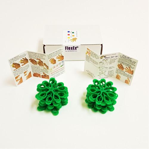 20-Box FlexEx® Green (Medium/Hard) Resistance