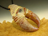 Glass Alien Creature Claw Pendant Beige lampwork Boro focal bead oddity by Eli Mazet VGW (ready to ship)