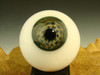 Glass Art Eyeball Marble Creepy Eye Oddity orb with veins #4 by Kenny Talamas  (ready to ship) Halloween Decor
