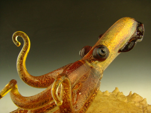 glass squid by chris upp