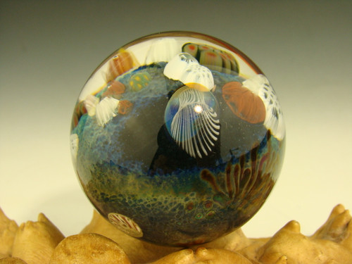 Coral Reef Glass Art Marble with Jellyfish Implosion