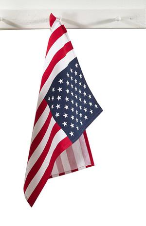 Fennco Styles American Flag Dish Towel - Set of 4