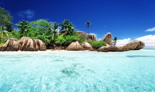 Seychelles Fragrance Oil