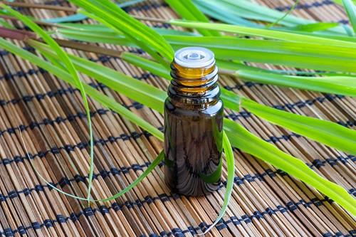 Citronella Java Essential Oil