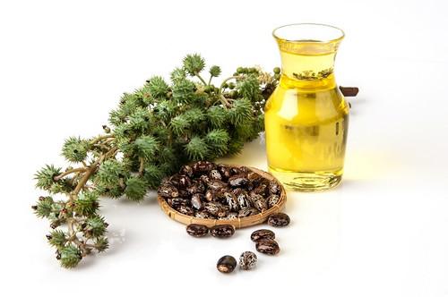 Castor Oil - Cold Pressed Organic