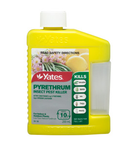 INSECTICIDE PYRETHRUM 200ML