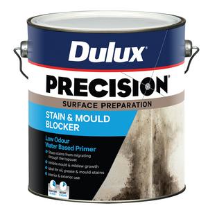 BLOCKER STAIN & MOULD 6L PRECISION