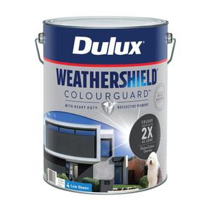 Paint W/shield CG L/S  Domino  10L 54PD0141