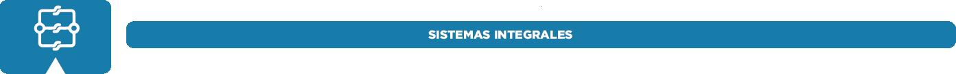 sistemas-integrales.png