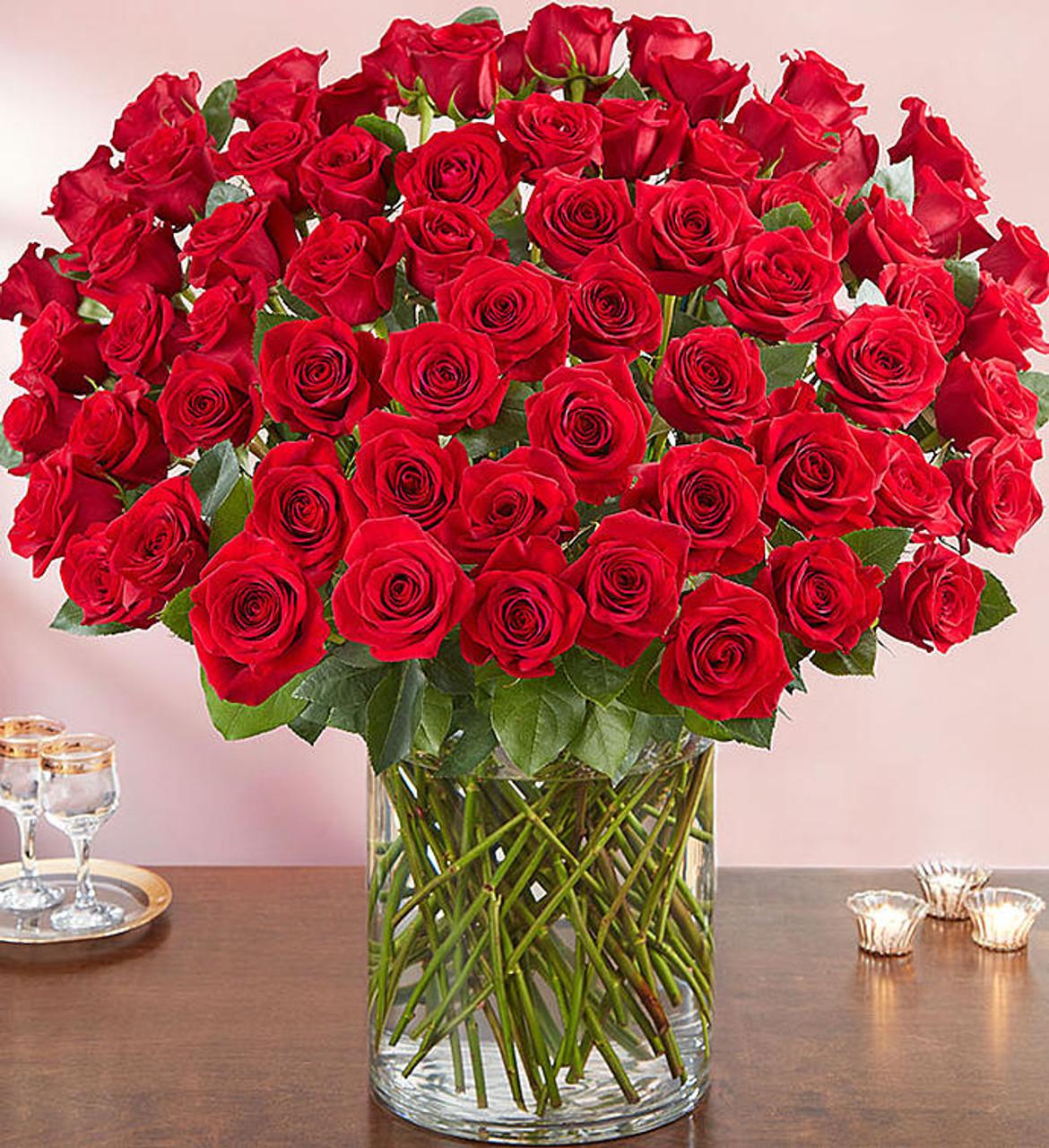 Image result for ne hundred red roses