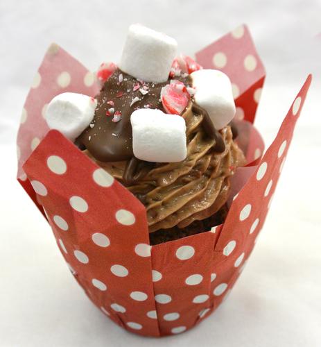Holiday Cocoa Cupcakes