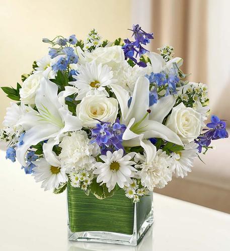 Healing Tears™ Blue & White
