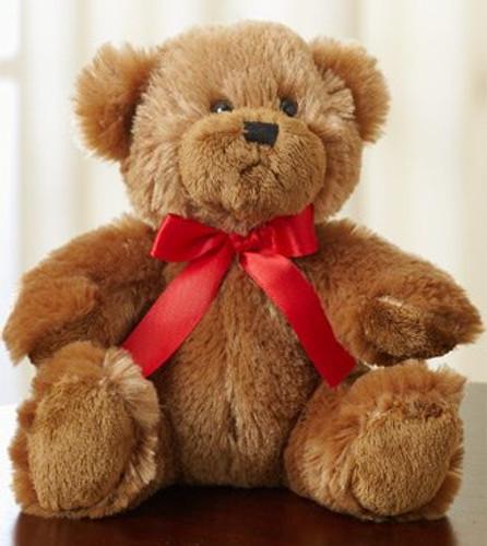 Cuddly Plush Bear