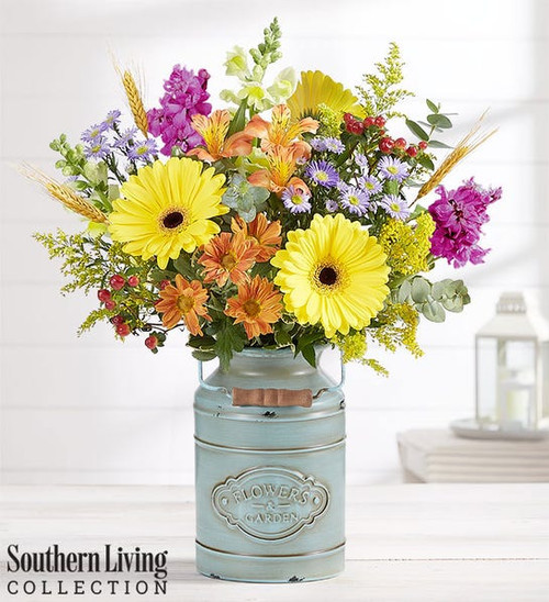 Autumn Delight™ by Southern Living®