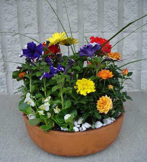 Bountiful Blooms (MGP2009)